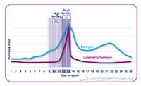 identify your fertile days graph